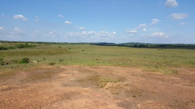Fazenda de 1700 hectares Amajari. ler descrição do anuncio - Foto 3