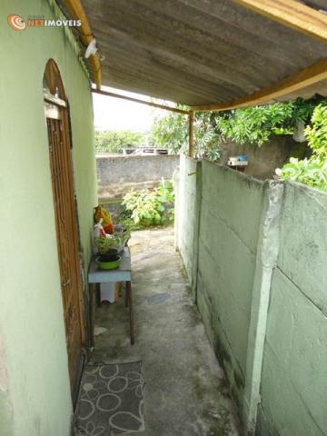 Casa à venda com 2 dormitórios em Glória, Belo horizonte cod:519597 - Foto 6