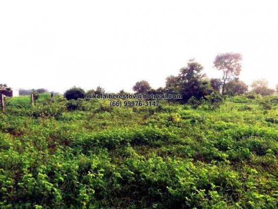 Terreno comercial 21.700 m² encostado no cidade confresa