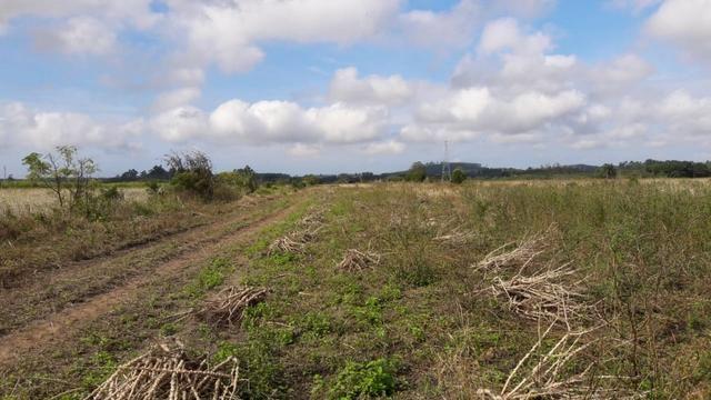 Terreno em Sangão próximo ao acesso do Aeroporto Regional - Foto 6