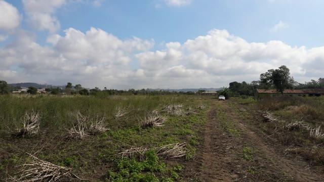Terreno em Sangão próximo ao acesso do Aeroporto Regional - Foto 10