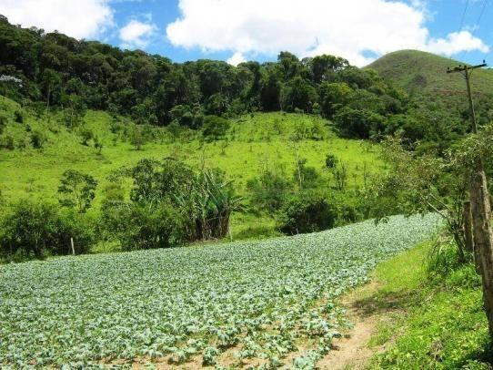 Fazenda rural à venda, Sebastiana, Teresópolis. - Foto 16