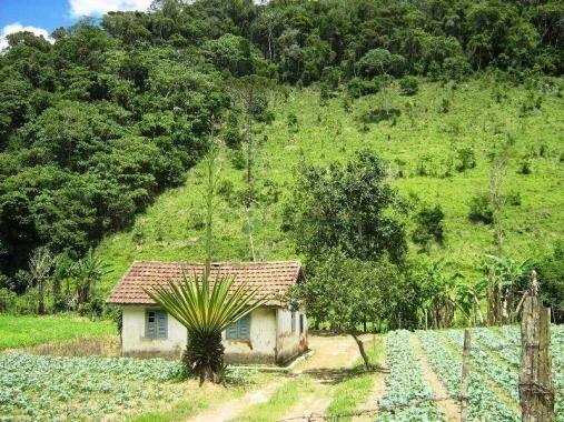 Fazenda rural à venda, Sebastiana, Teresópolis. - Foto 7