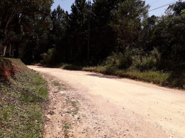 Chácara com 39.631m2 em Campina Grande do Sul - Aceito Imóvel Com Volta - Foto 12