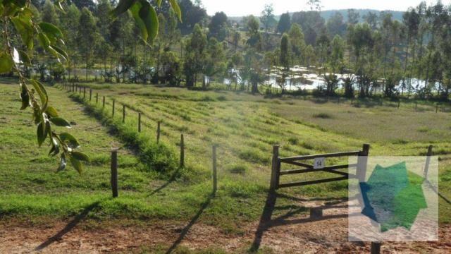 Haras à Venda em Sarapuí/SP - Foto 11