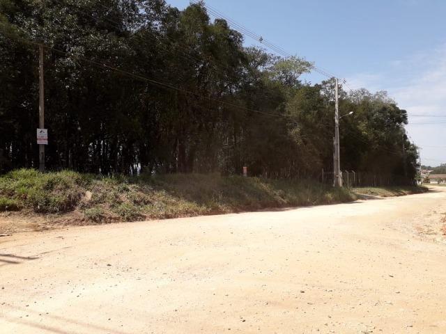 Chácara com 39.631m2 em Campina Grande do Sul - Aceito Imóvel Com Volta - Foto 2