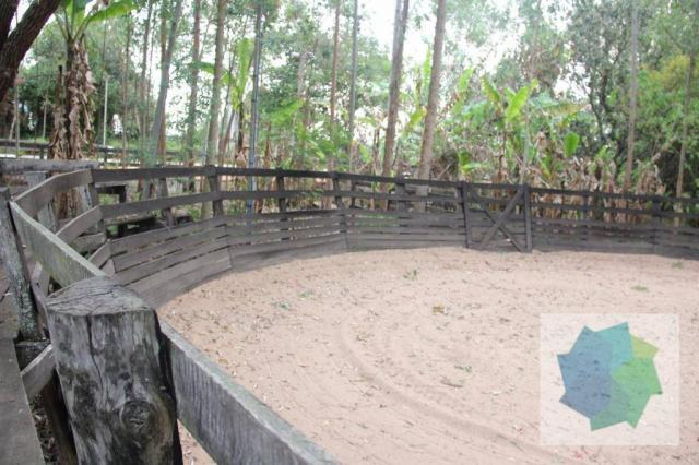 Haras à Venda em Sarapuí/SP - Foto 18