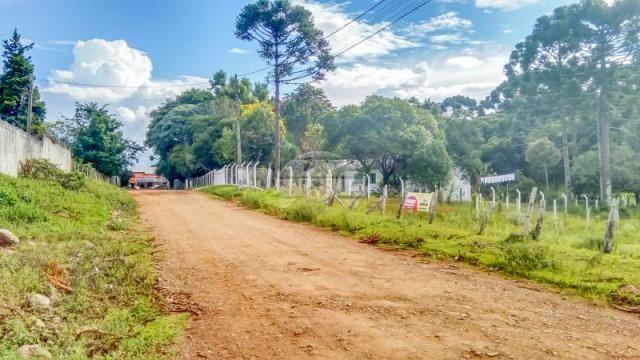 Terreno à venda em Boqueirão, Guarapuava cod:142198 - Foto 2