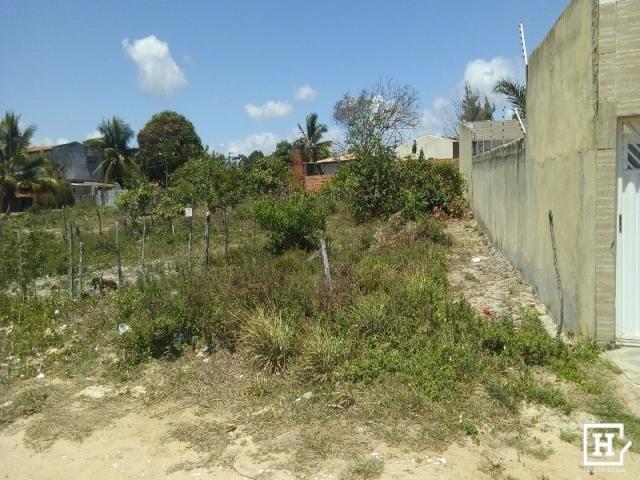 Lote à venda - mosqueiro (zona de expansão) - Foto 8
