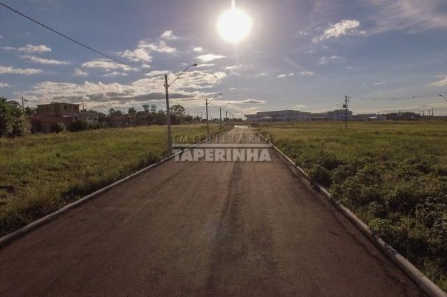 Terreno à venda em Pinheiro machado, Santa maria cod:10767