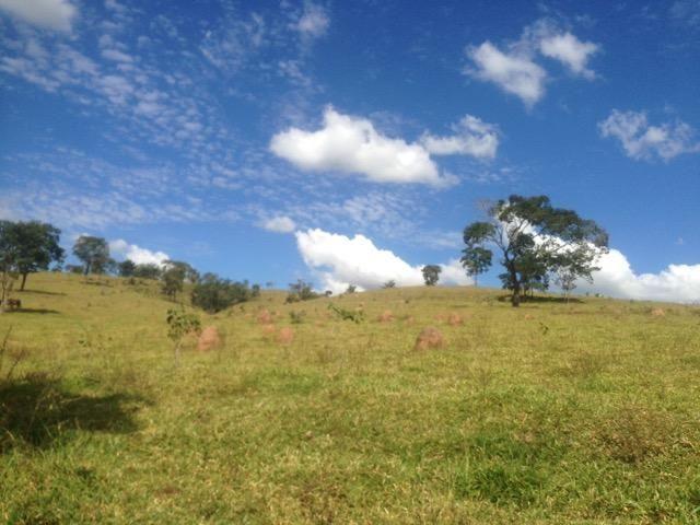 Fazenda caruru Valor R$ 1,400,000 - Foto 9