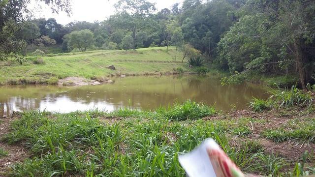05- Paz em um lote de 1000mt² em área Rural - Foto 19