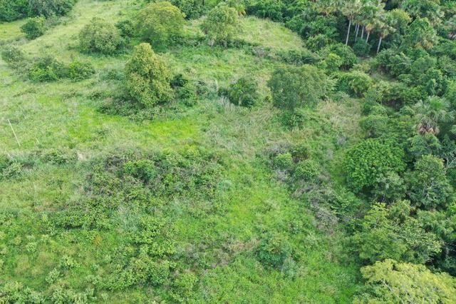 Fazenda no município de faina-GO! 24 Alqueires! - Foto 4