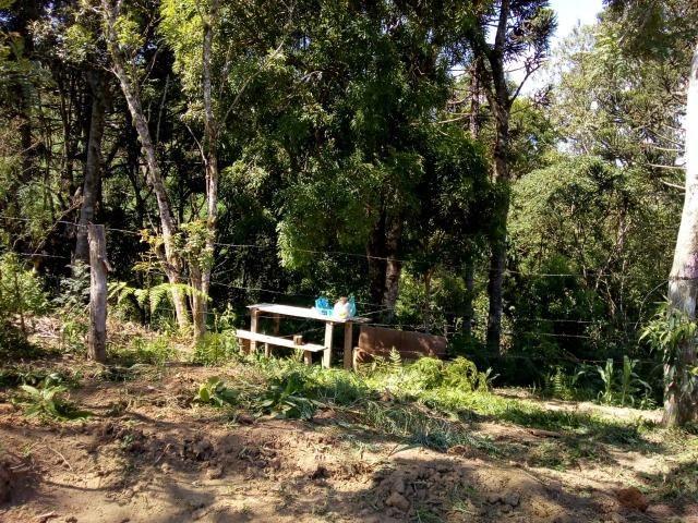 Chácara de Quitandinha 4.800 m² - Foto 12