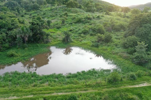 Fazenda no município de faina-GO! 24 Alqueires! - Foto 2