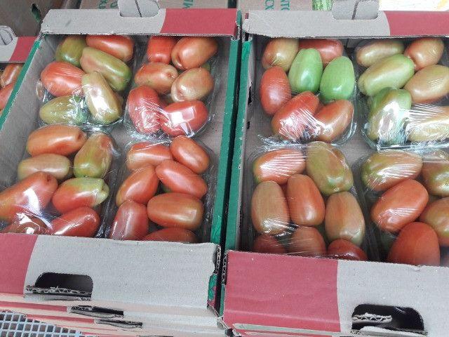 Vendo bandejas de brócolis e tomates - Foto 2