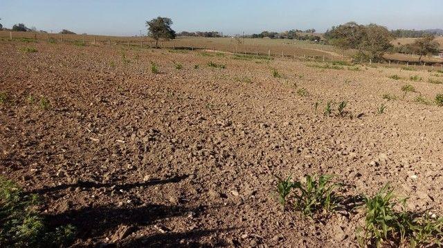 Fazenda, Sítio, Chácara, para Venda em Porangaba com 72.600m² 3 Alqueres, Plano, Limpo, 10 - Foto 13