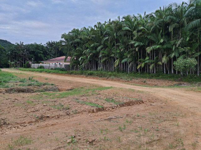 Vendo área com 20 mil m² Morretes com casa 180m², Barracão com 250m² - Foto 13