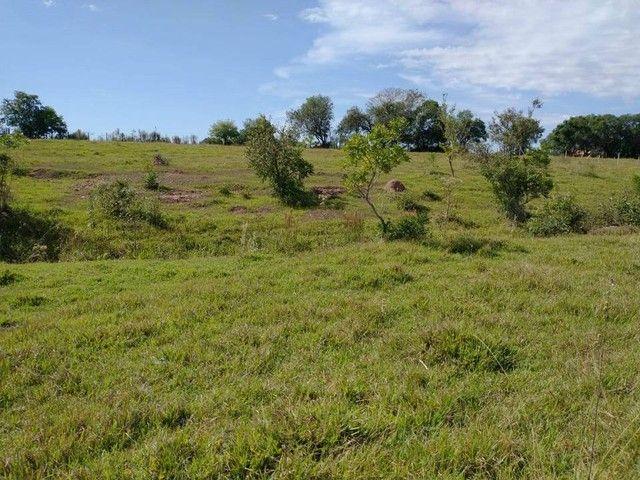 Sítio, Chácara, Fazenda, Lote, Terreno a Venda em Porangaba, Bofete, Torre de Pedra / SP 1 - Foto 15