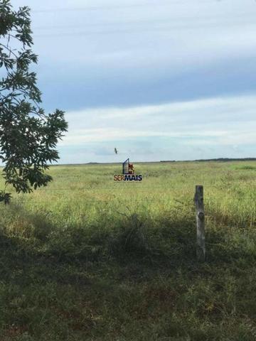 Fazenda a venda no estado do mato grosso