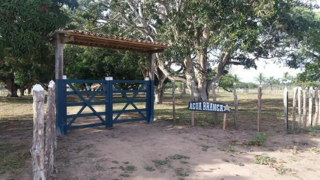 Fazenda para eventos ou temporada em São Gonçalo dos Campos Ba - Foto 15