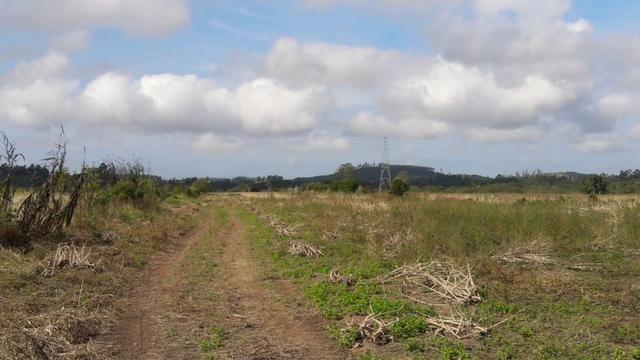 Terreno em Sangão próximo ao acesso do Aeroporto Regional - Foto 7