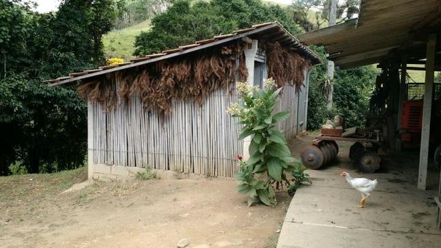 Fazenda em Paraibuna - Foto 3
