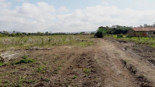 Terreno em Sangão próximo ao acesso do Aeroporto Regional - Foto 11