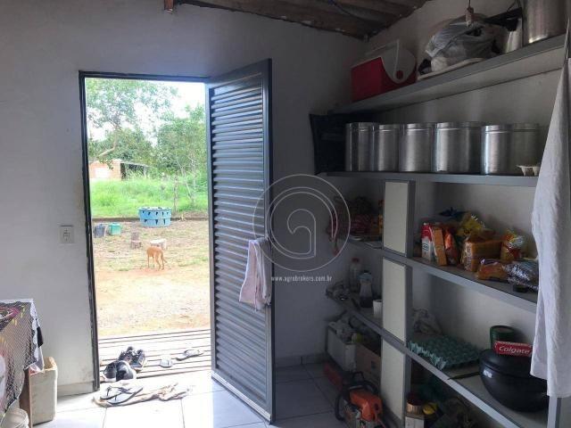 Sítio 11,8 ha na região distrito da guia - Foto 19