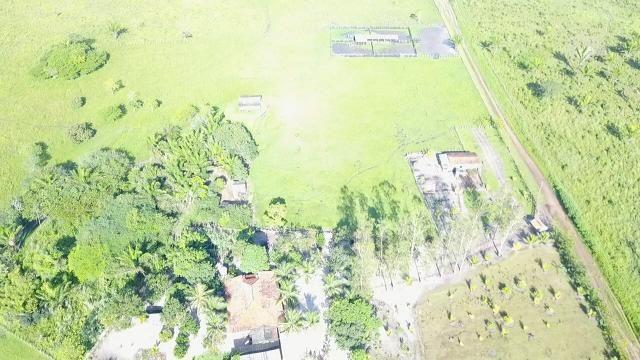 Oportunidade Única - Vendo Fazenda 1000 ha - Foto 6