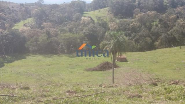Campo alegre, campinas - Foto 5