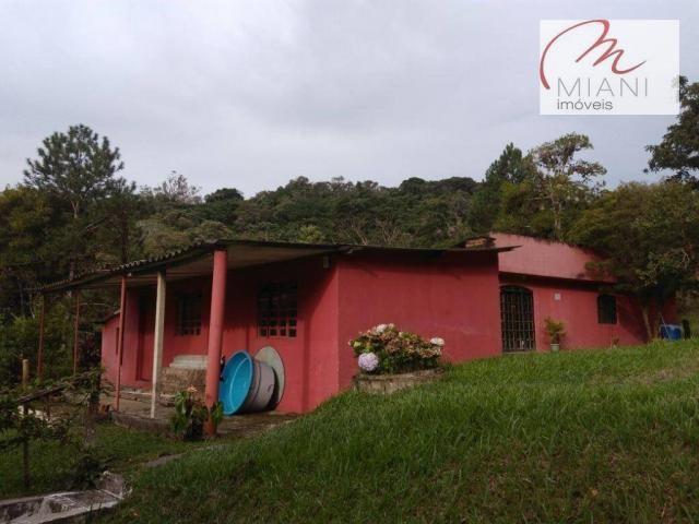 Chácara residencial à venda, Jardim das Palmeiras, Juquitiba. - Foto 6