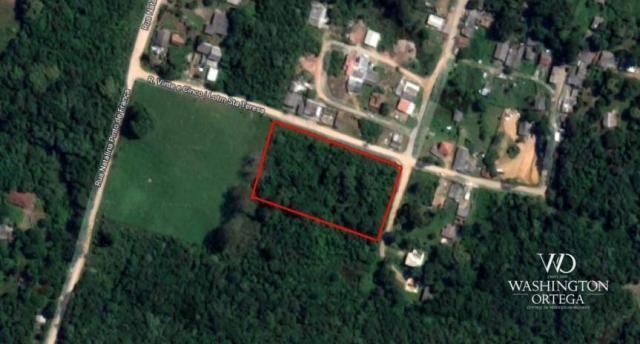 Área à venda, 5000 m² por r$ 800.000 - borda do campo - são josé dos pinhais/pr