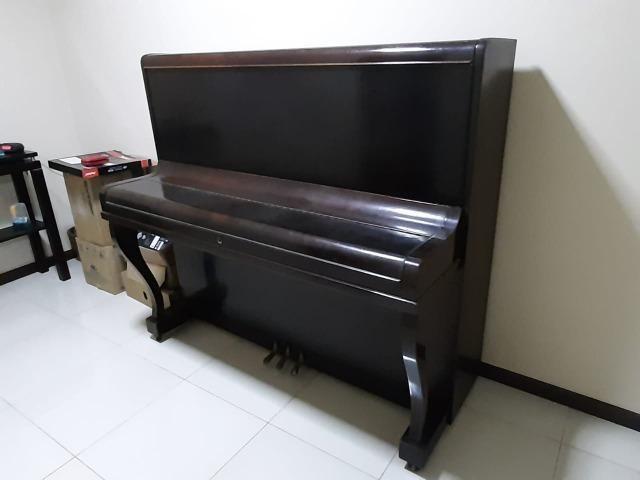 Piano Essenfelder - Conservadissímo - Foto 5