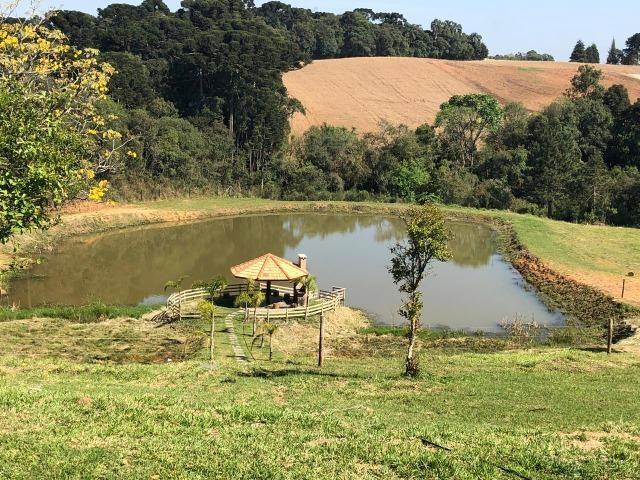REF. 2194 - Ótima Propriedade Rural a 500 metros do asfalto e a 8 km de Araucária - Foto 18