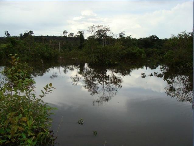 Fazenda região de Juara F0022 - Foto 3
