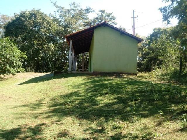 Chácara de 4 hectares em Acorizal, nas margem do rio Cuiabá. - Foto 5