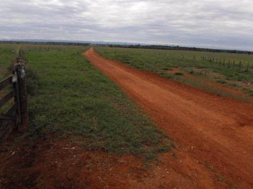 Fazenda 15000 hectares em vila bela, ha 60 km ponte e Lacerda - Foto 3