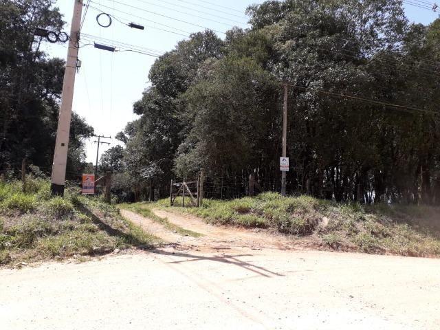 Chácara com 39.631m2 em Campina Grande do Sul - Aceito Imóvel Com Volta - Foto 4