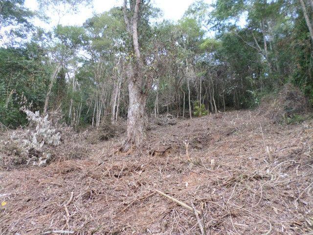 Terreno c/2.000 m² no Vale das Videiras