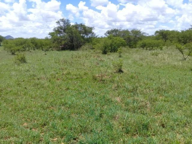 Excelente área de terra às margens da BR 116, com 614.196m - Foto 8