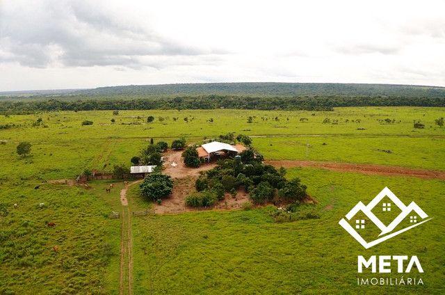 Fazenda Rondonia / parecis / pimenta Bueno. - Foto 2