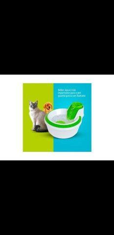 Fonte Bebedouro Água Corrente Para Cães E Gatos 110v Petlon