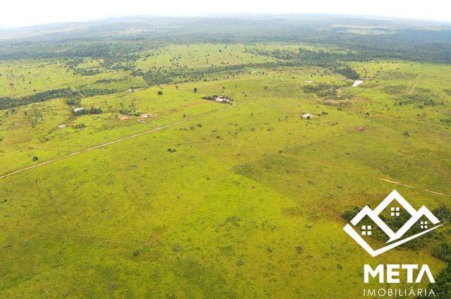 Fazenda Rondonia / parecis / pimenta Bueno. - Foto 3