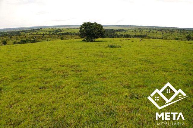 Fazenda Rondonia / parecis / pimenta Bueno. - Foto 12
