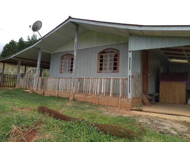 REF. 2427 Excelente chácara com 1.100m²e casa no Roça velha - Araucária/PR - Foto 12