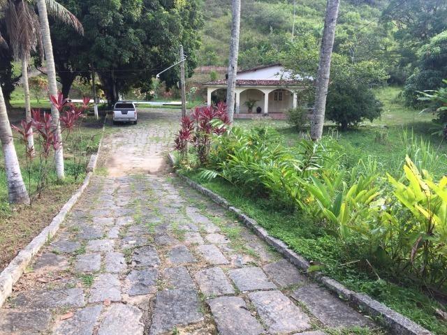 Vendo Chácara em Ribeirão PE - 10 hectares - Foto 5