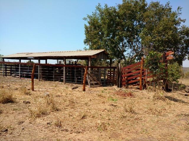 Fazenda Cuiabá Livramento 305,65hect - Foto 2