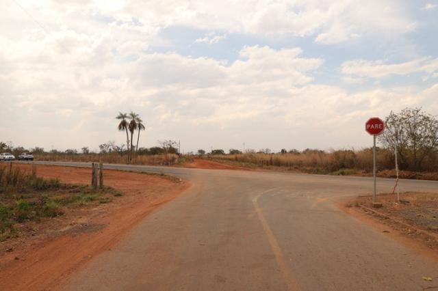 Terreno 5000 m2 na Guia - Foto 5