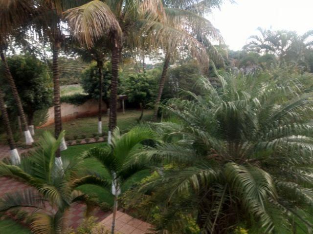 8076 | Chácara para alugar com 3 quartos em Maringa - Foto 7